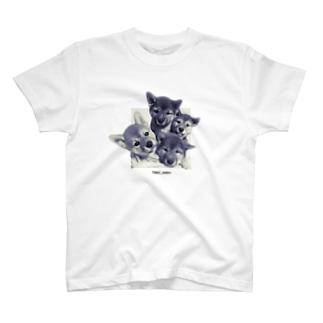 【tomi_moon】柴犬のとびだす!4姉妹 モノクロ T-shirts