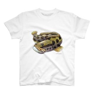 ライギョ T-shirts