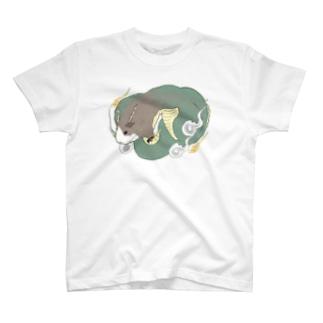 テディモルモットのドラゴン Tシャツ