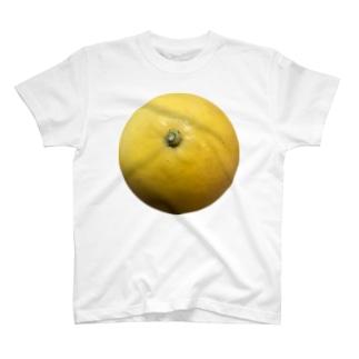 文旦 T-shirts