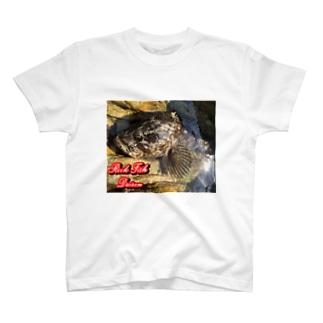 ベッコウゾイ(金華山産) T-shirts