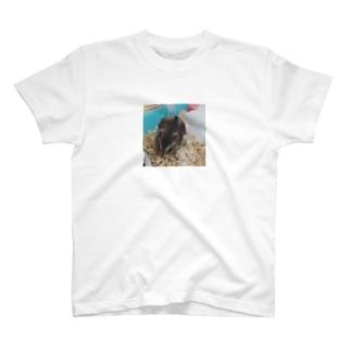 ハムスターのホイ T-shirts