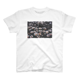 春夜花 T-shirts