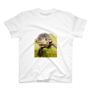 ミシニのmitoちゃん 2 T-shirts