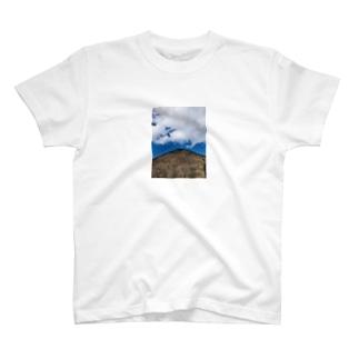 ハルナサン T-shirts