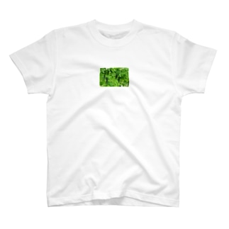ゴーヤー T-shirts