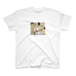 Quiero verte T-shirt 猫 T-shirts