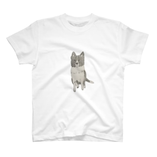 I♥︎BORDER COLLIE sit series T-shirts