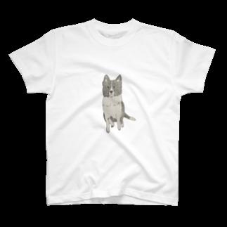 aibouのI♥︎BORDER COLLIE sit series T-shirts