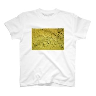 KAWAKI_y Tシャツ