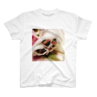 ルチアーノ三世の肉球 T-shirts