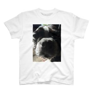 ぼすとん T-shirts