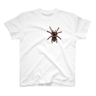 Drecome_Designのいたずらデザイン(ちょっとタランチュラついてますよ) T-shirts