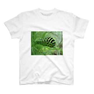 幼虫 T-shirts