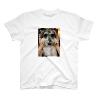 Shishimaru絵 T-shirts