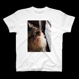 アマンダ(片目だから誤字多し)のルカ様① T-shirts