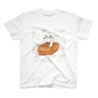段ねこ 夢白 T-shirts
