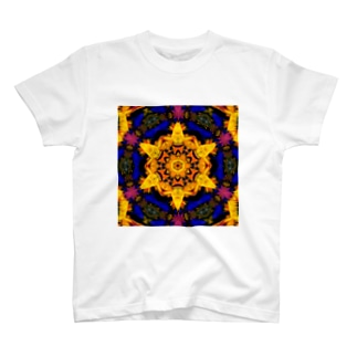 ヘキサグラム_001 T-shirts