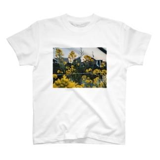 菜の花 T-shirts