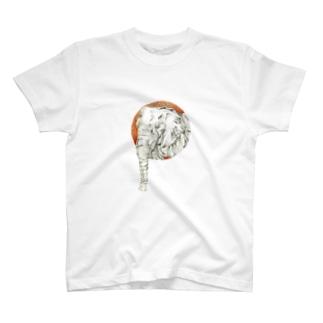 ぱお太郎 T-shirts
