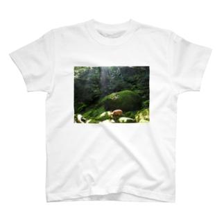 屋久島 白谷雲水峡の森 T-shirts