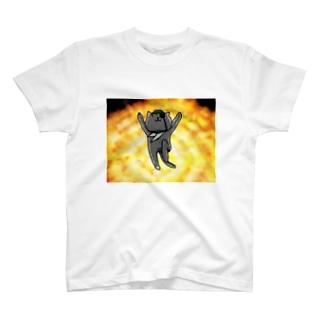 夏のどんぶり(ドンブリ) ブラザーズ【ドンブラ】のミッション完了! T-shirts