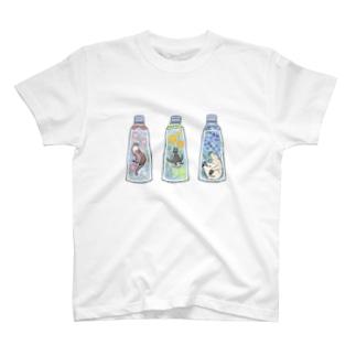 ハーバリウム×いきもの T-shirts