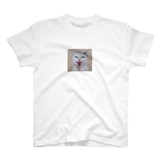 シャー T-shirts