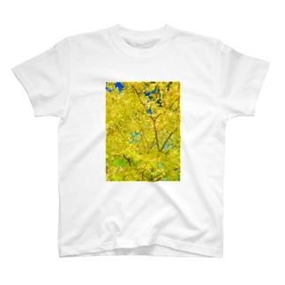 green-gold-flower T-shirts