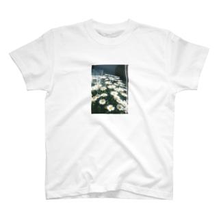 マーガレット T-shirts