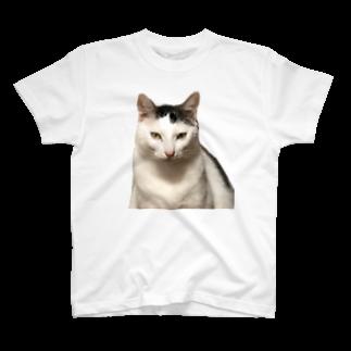 Kyomucatのリアルまめふく T-shirts