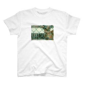 SHIKa T-shirt T-shirts