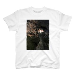 日本 T-shirts