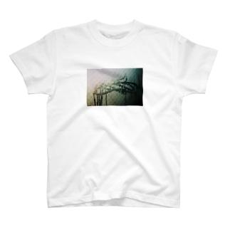 アメのひ T-shirts