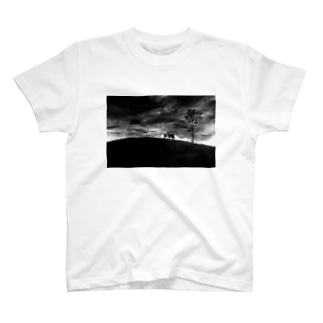 Dark T-shirts