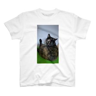 セクシーにゃんこビオラちゃん T-shirts