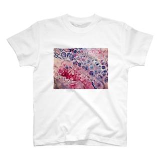 海の音_A.S Gallery T-shirts