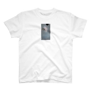 微熱 T-shirts