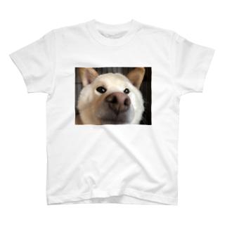 鼻でからんまるくん T-shirts