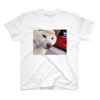 キリッとしたらんまるくん T-shirts
