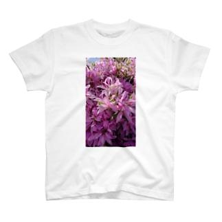 つつじ T-shirts