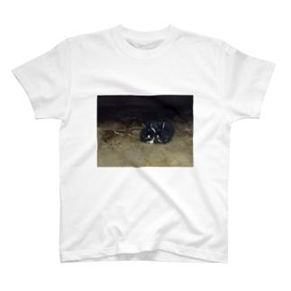 寄り添いうさぎ T-shirts
