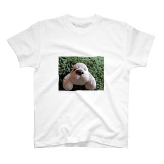 アメリカンコッカー T-shirts