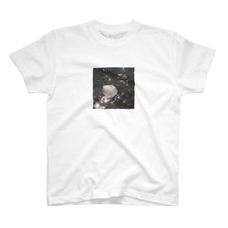 海と貝と T-shirts