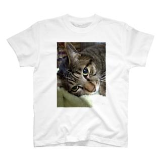 じんちゃん T-shirts