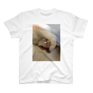 高橋賢司のてんちゃん(前足) T-shirts