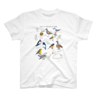 ワタリドリをさがしています T-shirts