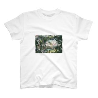 うっすらバードシャツ T-shirts