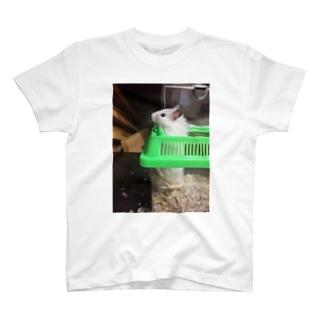 昔飼ってたハムスター2 T-shirts
