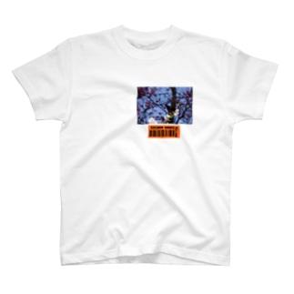 改良 T-shirts